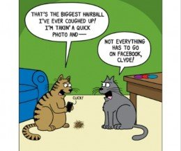 """#Caturday #Comic: """"Not everything has to go on Facebook"""" by Scott Metzger via @GoComics ~ https://mckry.co/1qOFdKl"""