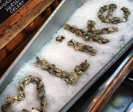 Like #oysters! ~ regram @tippleandbrine