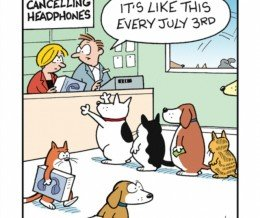 """""""It's like this every July 3rd."""" #FridayFunny #comic by Mark Parisi via @GoComics ~ https://mckry.co/1LIbPmM"""