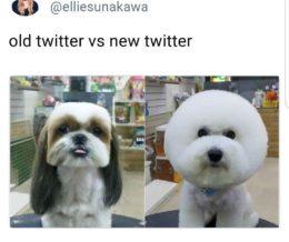 h/t @elliesunakawa via #Twitter