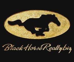 New Client Website Launched: BlackHorseRealty.biz ▶️ LINK IN PROFILE ◀️ Follow @BlackHorseRealty | #designcookery