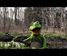 "A Special Performance of ""Rainbow Connection"" from Kermit the Frog 